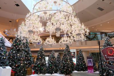 香港★クリスマス2018 クリスタルなクリスマス ~賛和豆花・巴士總站天台花園・Elements圓方~