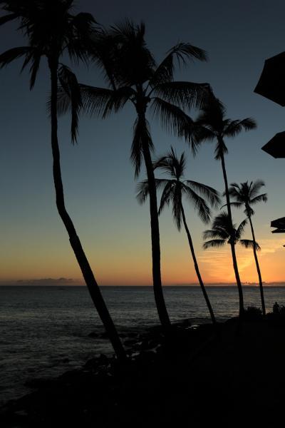 ハワイ島の旅