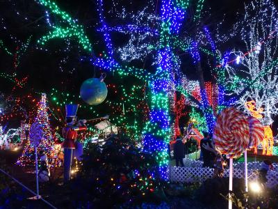 """ANAビジネスで行く!今年のクリスマスはバンクーバー&ビクトリアでイルミネーション尽くし!【前半:クリスマスマーケット&キャピラノ吊り橋""""キャニオンライツ""""&スタンレー公園""""ブライトナイツ""""】"""