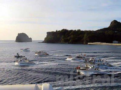 日本で一番行きにくい水族館のある地、小笠原へ・その5  最終日