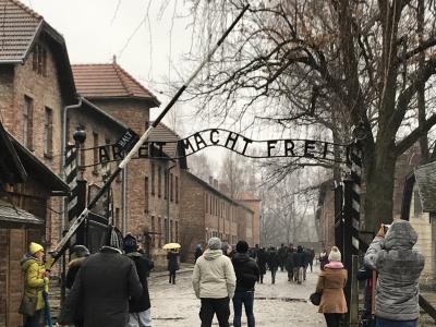 歴史を巡る-年末年始ヨーロッパ一人旅-⑤「アウシュビッツ・ビルケナウ強制収容所」