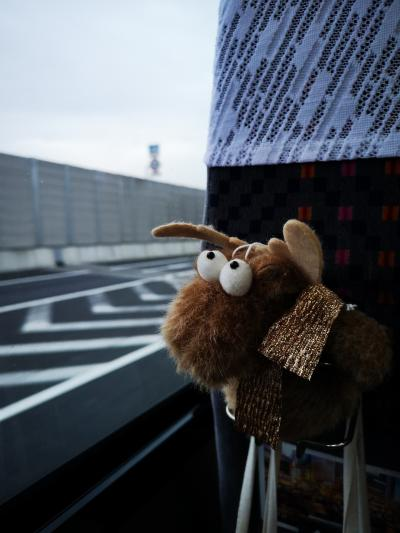 北欧のクリスマス8日間-1-成田空港前泊編