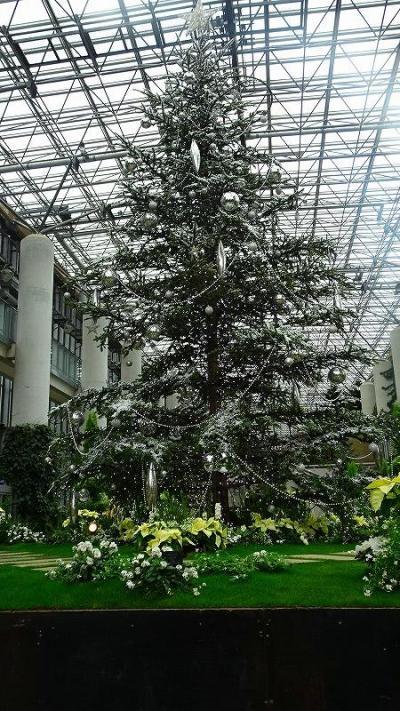平成最後の2泊3日の帰省(08) 淡路夢舞台 奇跡の星の植物園 その4完。
