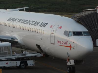 新石垣空港からボーイング737-800に乗りました。那覇への最終便。満席でした。