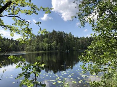 フィンランド&日帰りタリン やりたいことを叶える旅  ヌークシオ国立公園&フィンランドサウナ編