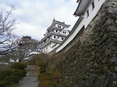 続日本100名城の旅(郡上八幡城編)