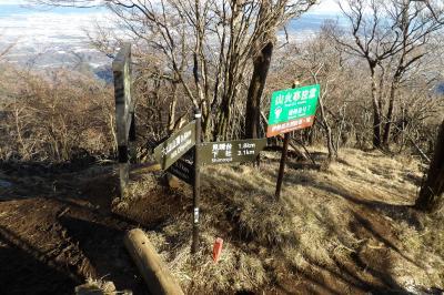 大山下山道-展望台へ