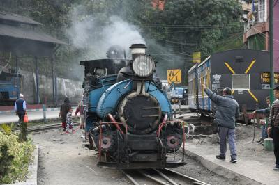 ダージリン・ヒマラヤ鉄道(トイ・トレイン)に乗り、紅茶を味わう