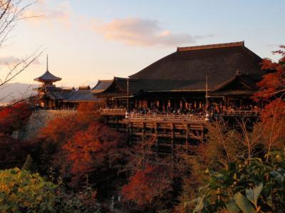 ひとり紅葉狩り部 2008 西山東山洛北など 京都ぐるり三日間   京都詣でNo.11
