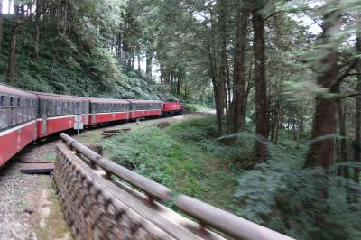 台湾で年越&温泉2019 5日間 ①高雄で新年の花火・阿里山森林鉄道