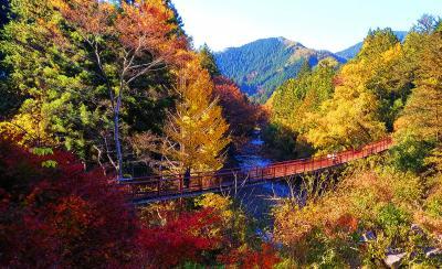 温泉と紅葉の旅