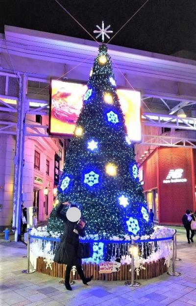 クリスマス 済州島 街歩き