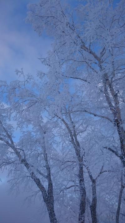 201812,今シーズン初スキー,大晦日のテイネスキー場はナイター500円
