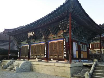 182回目訪韓はテンプルステイでお世話になった宝鏡寺を3ヶ月ぶりに再訪。チムジルバン2連泊2泊3日旅(2019/1/12土~14月)。No.5/6_宝鏡寺