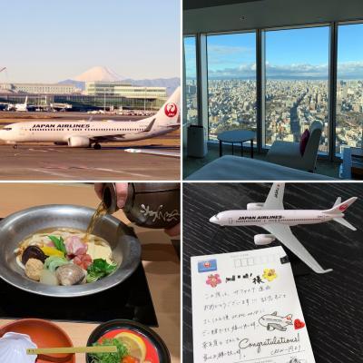 2018年JGC修行12月解脱【大阪ラストフライト】ハルカスの上42階に泊って☆駆け込みでサファイアへ!
