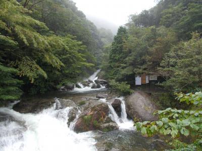 鹿児島と屋久島白谷雲水峡観光(その3)