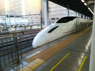 新幹線で博多へ!博多グルメを堪能したよ。うどんも肉もおいしかったです!ホテルユニゾがきれいでした。