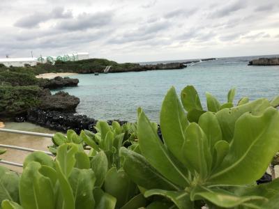 沖縄・与論島 船の旅 2日目 クイーンコーラル8 で与論島へ  2019.1.2