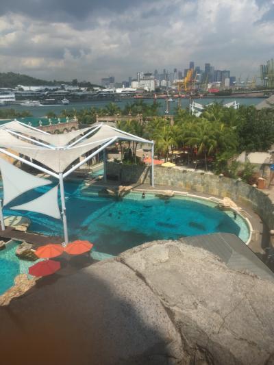 2018年冬 年末年始シンガポール家族旅行2