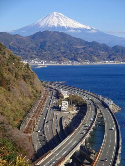 新春の富士を東海道の難所から望み、さらに「キング」に出会う!
