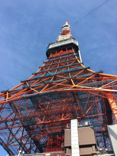 年末、弾丸東京観光、はとバスツアー東京二大タワー 競演   東京スカイツリー 東京タワー入場付きコース