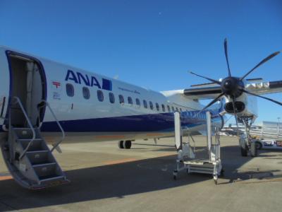 元旦空の旅ー2 ANA3231 NRT→SDJ DHC-8