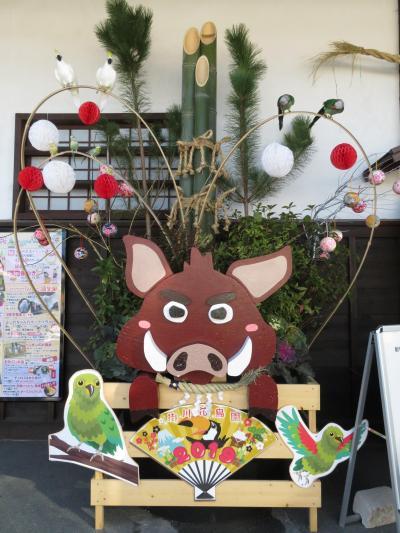 掛川花鳥園へドラゴンズパックで!