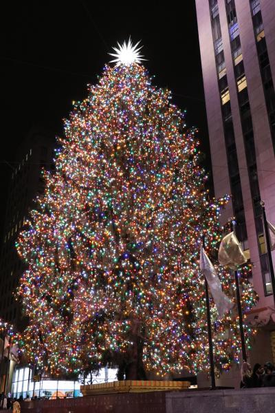 ニューヨークのクリスマスとセントマーティン島VOL2(2日目)