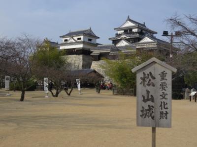 【復刻】新年の四国(3)現存12天守・松山城