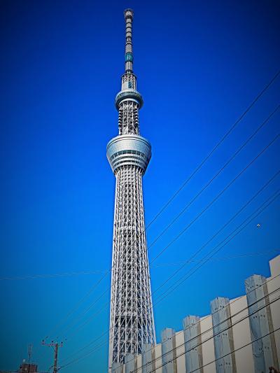 東京スカイツリー  視点-1  大横川親水公園を北へ歩く ☆水辺の面影を残す南北空間で