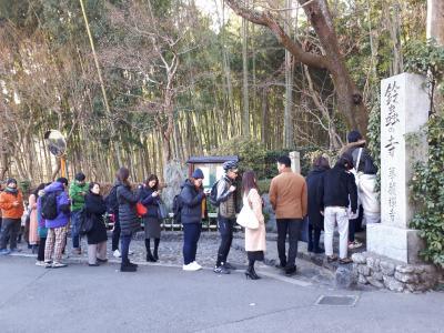 正月休みも混雑の京都