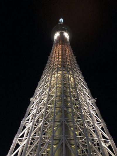 2泊3日 年末年始 東京観光旅行
