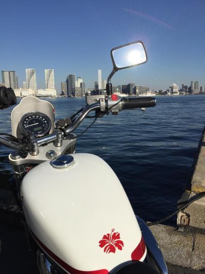 2019年1月自己満足的東京湾岸Short Trip