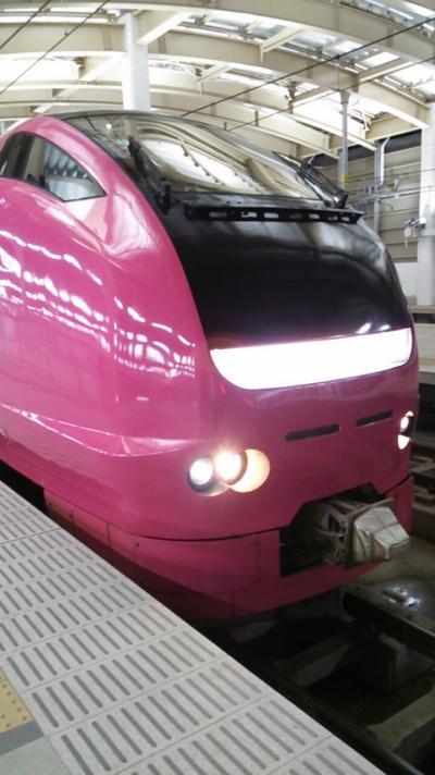 「えちごツーデーパス」で行く新潟の鉄道満喫の旅 2019・01(パート2)