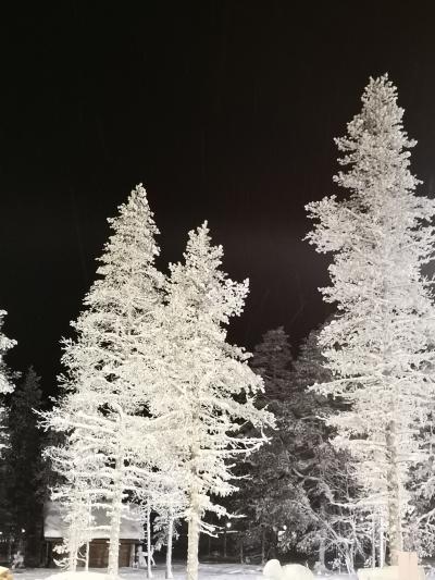 北欧のクリスマス8日間-4-サーリセルカ滞在編2