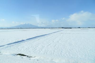 旅する幼児 ~どこかにマイルで冬の青森へ~1日目
