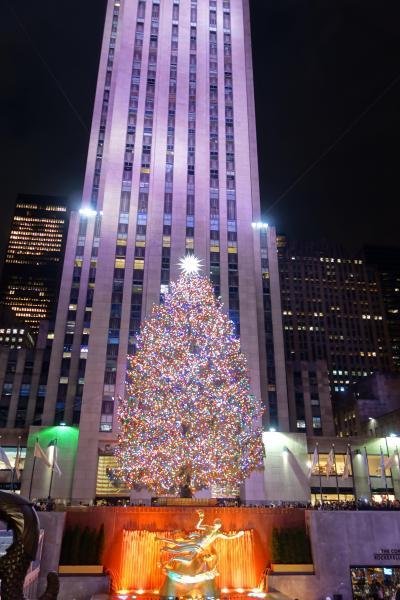 '19.01 元旦からニューヨーク&ボストンに一人旅。。。旅始めで今年の運を使い果たしたかも。。。
