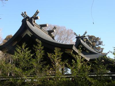 恒例の正月,ウォーキングで鷲宮神社に初詣