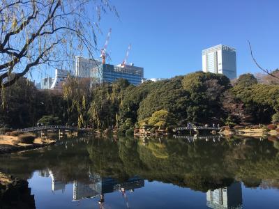 2019年1月 東京散策24 東京都庁・新宿御苑、最後に競馬で運だめし