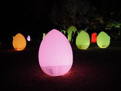 湖畔を彩るデジタルアート「チームラボ 森と湖の光の祭」@ metsa village[メッツァ ビレッジ]