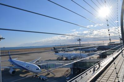 今年もこれから。2019初日の出を拝みに4トラベラーさんと出かけた羽田空港の旅。#飛行機撮影に大興奮、初日の出はモヤモヤっと。。#