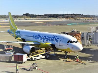 4泊5日 正月旅行 セブパシフィック航空でセブ島へ