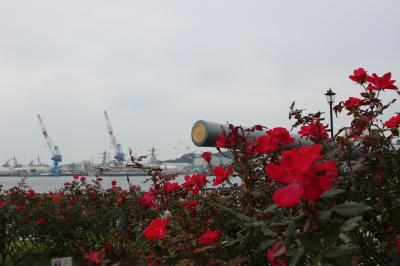 空自の次は海軍へ  横須賀ドライブ