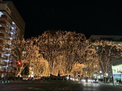201812-03_仙台市内観光 Sightseeing in Sendai (Miyagi)