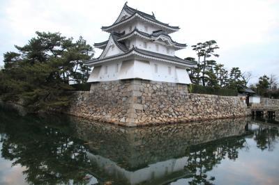 高松城跡玉藻公園で鯛にえさやり、こりゃ春からめでたいな