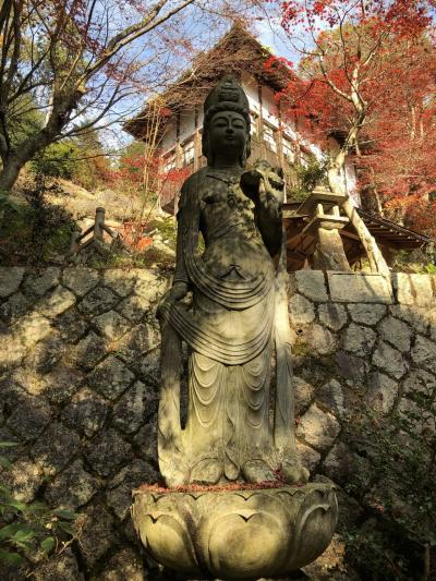 十二坊山と、善水寺