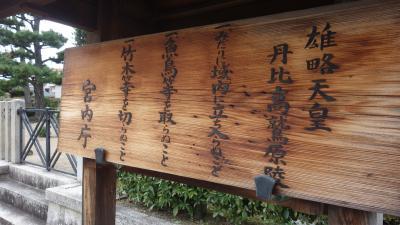 読みにくいと作者が弁明  日経新聞連載小説「ワカタケル」の雄略天皇陵を行く