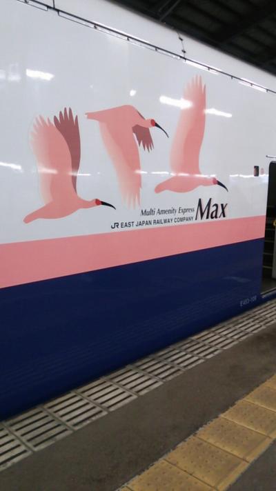 「えちごツーデーパス」で行く新潟の鉄道満喫の旅 2019・01(パート4・完結編)