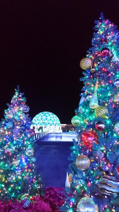 真冬のイルミネーションはひときわ輝き美しい!が、寒い!~蒲郡ラグーナテンボスと変なホテル