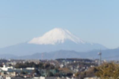 東福寺裏から見る富士山
